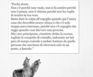 frasi, lupo, and frasi italiane image