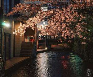 city, nature, and night image
