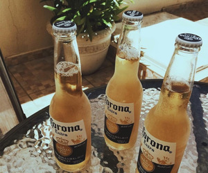 corona, drink, and beer image