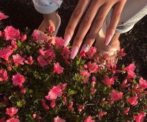 flowers, nails, and make up image