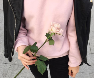 aesthetic, pastel, and rose image