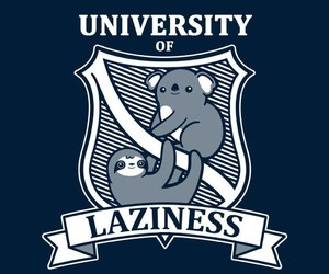 Koala, laziness, and sloth image