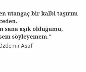 tumblr, özdemir asaf, and türkçe sözler image