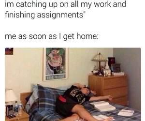 funny, meme, and homework image