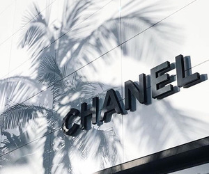 aesthetic, brand, and chanel image