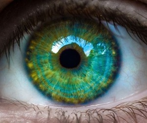 green, eye, and blue image