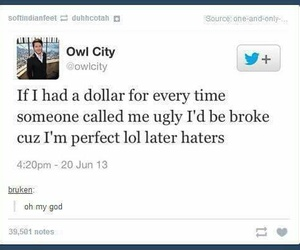 funny, Owl City, and tumblr image