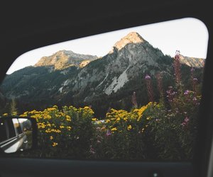 mountains, travel, and flowers image