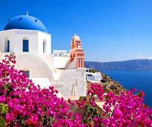 travel, beauty, and flowers image