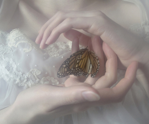 butterfly, girl, and pure image