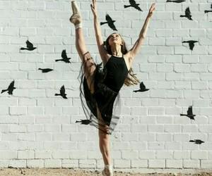 ballerina, ballet, and bird image