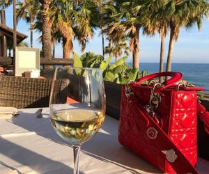 bag and wine image
