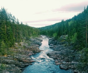 nature, norway, and river image