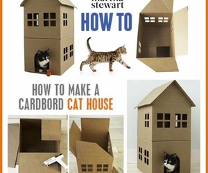 cardboard, cat house, and cats image
