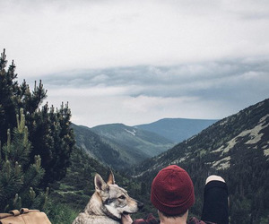 nature and dog image