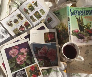 flowers, magazines, and beautiful image
