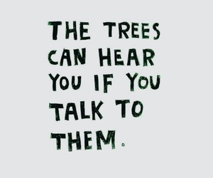 quotes and trees image