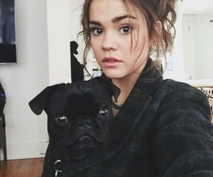 maia mitchell, the fosters, and icon image