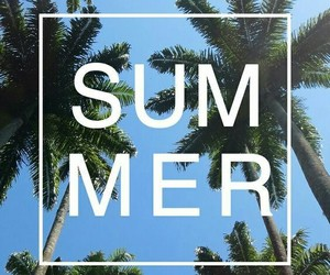 summer, wallpaper, and palms image