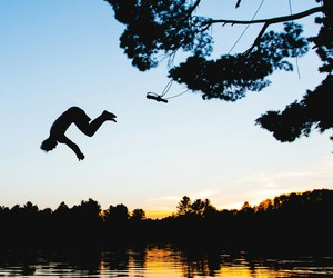 dive, sunset, and forest image