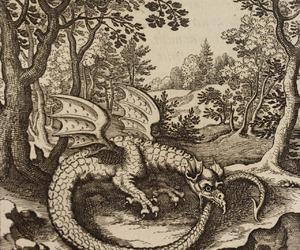 dragon and ouroboros image