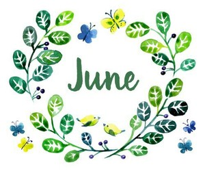 june, summer, and birds image