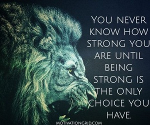 keep fighting, keep strong, and you're doing great image