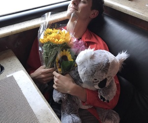 connor franta, flowers, and youtube image