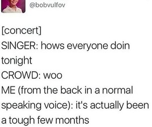 concert, funny, and twitter image