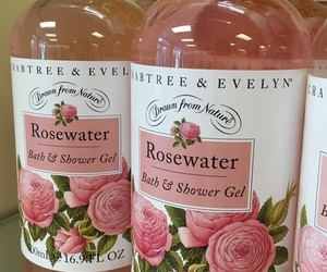 aesthetic, rosewater, and lolita image