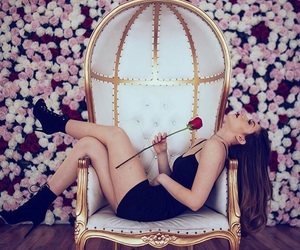 dress, rose, and meredith foster image