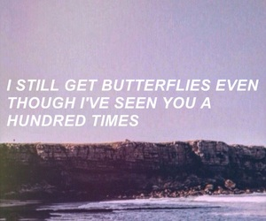 aesthetic, beach, and butterflies image