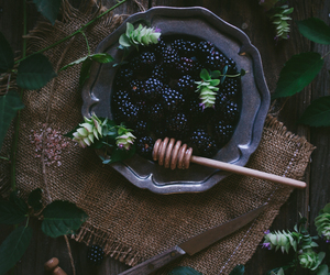 blackberry and berries image