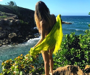 explore, tropical, and summerhair image