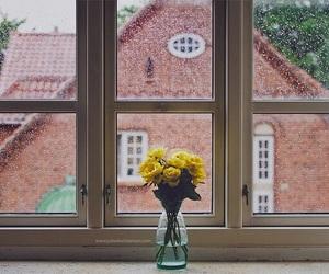 floral, jar, and vase image