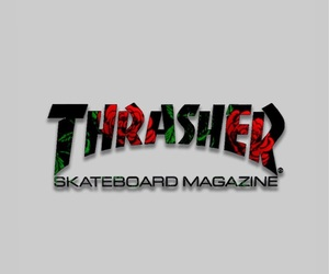 roses, wallpaper, and thrasher image