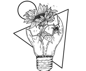 flower and drawing image