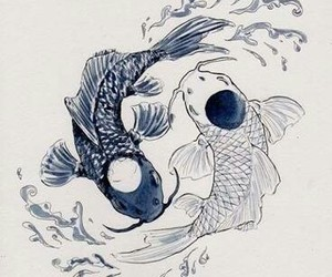 fish, art, and white image