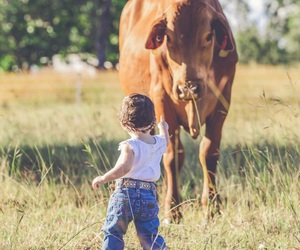 country, country life, and lifestyle image