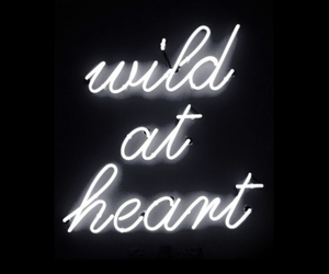 black, colorful, and neon signs image