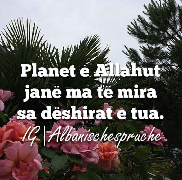 37 images about Albanische Sprüche on We Heart It | See more about ...