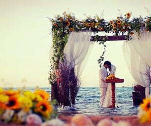 beach, flowers, and water image