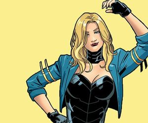 Black Canary, wonder woman, and dc comics image
