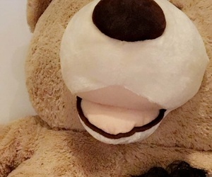 marcus, teddy bear, and cute image
