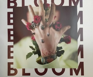 art, bloom, and music image