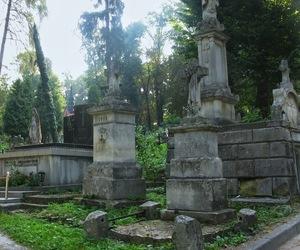 aesthetic, aesthetics, and cemetery image