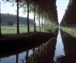 belgium, Harry Gruyaert, and nature image