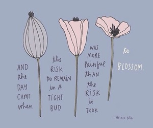quotes, flowers, and inspiration image