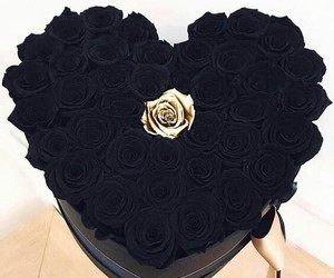 flowers, black, and rose image