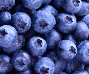 wallpaper, blueberry, and blue image